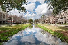 Celebration, Florida - The town that Disney manufactured.