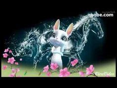 Zoobe Bunny Geburtstagsständchen - YouTube