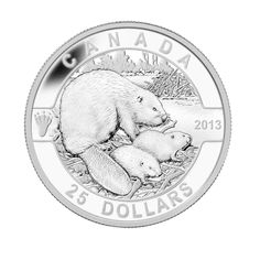 First 1 oz silver coin in our new O Canada subscription! O Canada, Canada Post, Coining, Le Castor, Canadian Things, Foreign Coins, Coin Display, Coins For Sale, World Coins