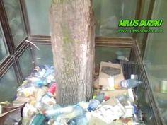 FOTO/VIDEO - Gunoiul de langa noi. Pe bulevardul Unirii Sud exista un loc, sub…
