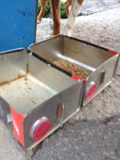 This is Poxie's food bowl. It is a cut open can that held oil/gas. :(