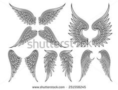 Set of heraldic wings or angel wings drawn black lines. Vector illustration