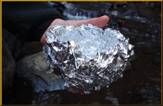 Aluminum has been long known to be neurotoxic, with mounting evidence that chronic exposure is a factor in many neurological diseases, including dementia, autism, and Parkinson's disease. Nutrition Articles, Health Articles, Health And Nutrition, Health And Wellness, Health Tips, Health Facts, Natural Cures, Natural Health, Arthritis