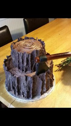 Two tier tree stump/log cake; perfect for a lumberjack party. Tree Stump Cake, Tree Stumps, Campfire Cake, Lumberjack Cake, Log Cake, Tree Cakes, Creative Cakes, Shower Cakes, Let Them Eat Cake