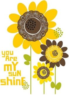 You are my sunshine.my only sunshine.you make me happy when skies are gray. This song reminds me of my mom -- she sang it to a lady she used to take care of. Happy Flowers, Beautiful Flowers, Sun Flowers, Beautiful People, Sunflowers And Daisies, You Make Me Happy, Mellow Yellow, Yellow Sun, Shades Of Yellow