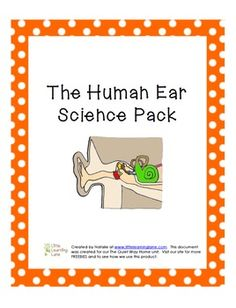 $1 The Human Ear Science Pack - created for our BFIAR The Quiet Way Home - visit www.littlelearninglane.com for more fun ideas & FREEBIES!
