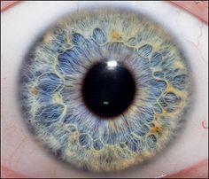 Iris/eye close up Pretty Eyes, Cool Eyes, Beautiful Eyes, Macro Pictures, Eye Pictures, Eyes Photos, Foto Macro, Realistic Eye Drawing, Drawing Tips