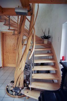 dreistämmig verwundene Baumskulptur mit Wendeltreppe in Ahorn