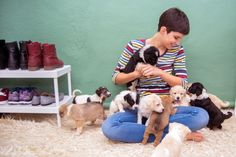 First Time Puppy Parents: What to Expect Cheap Hobbies, Fun Hobbies, Most Beautiful Pictures, Cool Pictures, First Time, Parents, Told You So, Puppies, Pet Food
