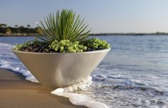 Power, voice and data solutions for home and office. Cable management, wire management products organize, protect and hide wiring in office furniture. Monthly specials and clearance Modern Planters, Indoor Planters, Garden Planters, Planter Pots, Landscape Design, Garden Design, Wire Management, Cable Management, Fiberglass Planters