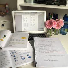 Image de study and motivation