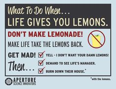 What to do when life gives you lemons. by skylercloud222, via Flickr