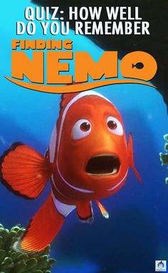 Our favorite Disney fishes are making a comeback in the sequel, Finding Dory, but how well do you remember the 2003 classic original movie? Take this quiz to test your Finding Nemo trivia knowledge!