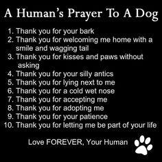 Not keen about praying TO a dog, but good prayer FOR a dog. With a little tweaking of course.
