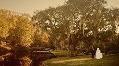 Charleston Wedding Venue: Middleton Place