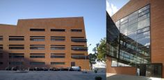 Bernhard-Nocht-Institute Hamburg | ksg architekten