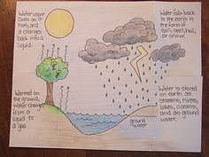 Water cycle foldable but could be used for any theme!