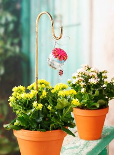 Hummingbird potted plant feeder