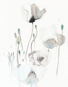 White poppies Watercolor, akvarel, flowers, art