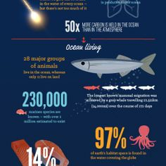 Ocean hides a lot of secrets. Most of them we won't discover in our lifetime. But, with the help of this great infographic you will at least learn 5