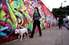 Grafitis en las calles de Bogotá,  le dan color y vida a la selva de concreto