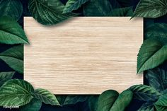 Blank wooden board on a metallic green leaves textured background illustration Flower Backgrounds, Abstract Backgrounds, Wallpaper Backgrounds, Wallpapers, Design Websites, Hawaiian Party Decorations, Powerpoint Background Design, Framed Wallpaper, Leaf Texture