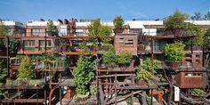 """""""Casa na árvore"""" italiana é linda e sustentável"""