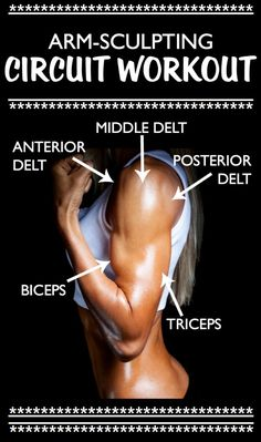 6 BEST EXERCISES FOR ARM DEFINITION AT HOME is part of health-fitness - Tone and sculpt your arms in one amazing workout All you need is a pair of dumbbells to add definition and strength to your biceps, triceps, and all three heads of your de… Good Arm Workouts, Gym Workouts, At Home Workouts, Workout Routines, Ballet Workouts, Killer Leg Workouts, Lower Ab Workouts, Workout Music, Body Fitness