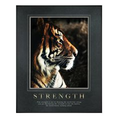 http://www.successories.com/products/Motivational-Posters/All-Motivational-Posters/Classic-Motivational-Posters/16/93942/Strength-Tiger-Motivational-Poster