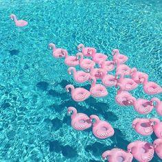 grafika summer, pink, and flamingo  | GLITBIT | glitbit cases | glitbit inspired | glitbit inspiration | summer | summer vibes | summer dream | west coast | palms | summer time | beach | beach vibes | vacation | vacay | pineapple | trpical |