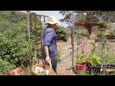 School Gardens For Kids in Australia Help Connect Paddock To The Plate