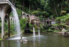 Jardines de Madeira 🌴