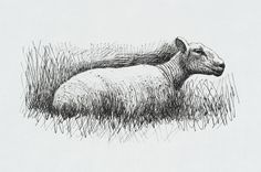 Henry Moore OM, CH 'Sheep Resting', 1974 © The Henry Moore Foundation, All…