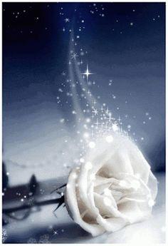 FLOWER LOVE ~~