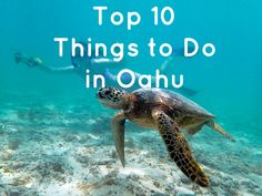 Top 10 Things to Do in Oahu {sign me up to snorkel with the turtles!}