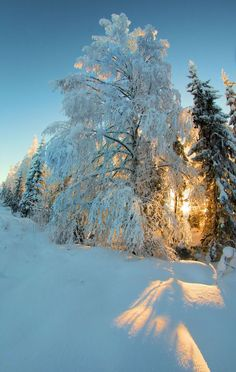Winter photography by Kari Liimatainen
