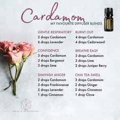 Cardamom-----ooooo love the confidence blend! Essential Oil Perfume, Essential Oil Uses, Essential Oil Diffuser Blends, Doterra Diffuser, Diffuser Recipes, Aromatherapy Oils, Doterra Essential Oils, Bergamot, Diffuser Blends
