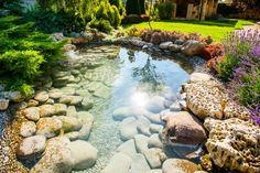 grand-bassin-d-eau-jardin-pierre