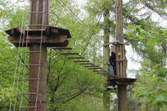 Go Ape, Wendover. Adventures in the trees!