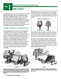 Here's a set of resource materials from the National Arbor Day Foundation on how trees produce and conserve energy. Arbor Day Foundation, 4th Grade Science, Arbour Day, Rain Barrel, Native Plants, Yard Landscaping, Save Energy, Conservation, Trees