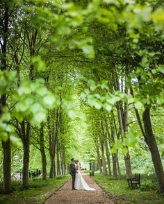 Port Lympne Mansion Wedding Tree lined couple photo Bride and Groom
