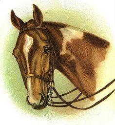 simple vintage horse clipart