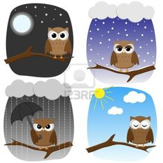 Four owls on branches in different weather and in different mood Stock Photo - 10329561