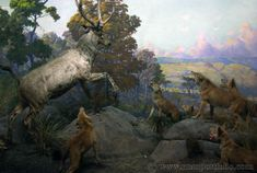 Stag and Wolves at the American Museum of Natural History