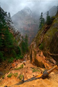 ~ Hidden Canyon ~ Zion National Park, Utah....there are chains to hold onto on some of the narrow parts of the trail.