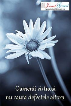 .:Jurnal Spiritual:.