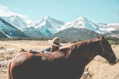 All The Pretty Horses, Beautiful Horses, Baby Animals, Cute Animals, Good Friends Are Like Stars, Cowboy Horse, Horse Ranch, All About Horses, Ranch Life