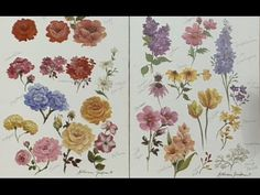 """The Beauty of Oil Painting, Series 1, Episode 27 : """"Flower Painting Techniques"""" - YouTube"""