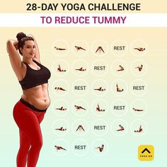 Gym Workout For Beginners, Gym Workout Tips, Fitness Workout For Women, Fitness Workouts, Easy Workouts, Workout Videos, Yoga Fitness, Gymnastics Workout, Morning Yoga