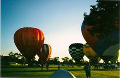 Hot Air Balloons at Sunrise in Griffith, NSW